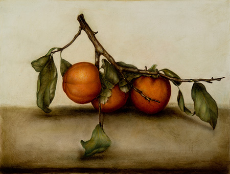 Still life - 30 x 40 - Mixed technique: pencil, veiled with natural organic colours (2015)