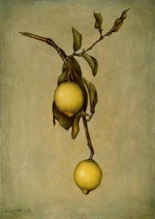 Lemons - 41 x 31 - Mixed technique: pencil, encaustic pastel, with natural organic colours (2015)