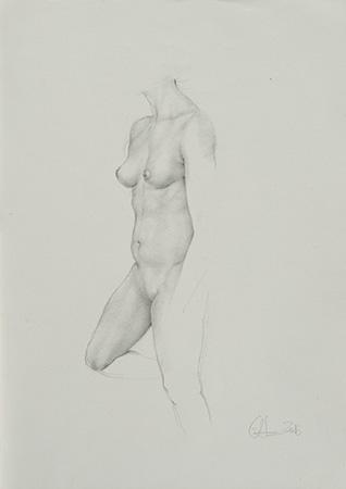 Nude - Technique: pencil (2016)